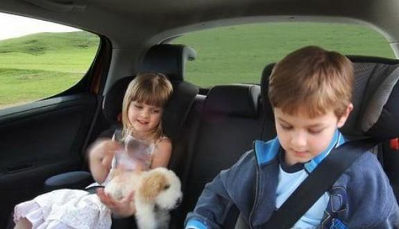 车上适合放什么零食,适合放在车上的零食,有什么零食适合放车上